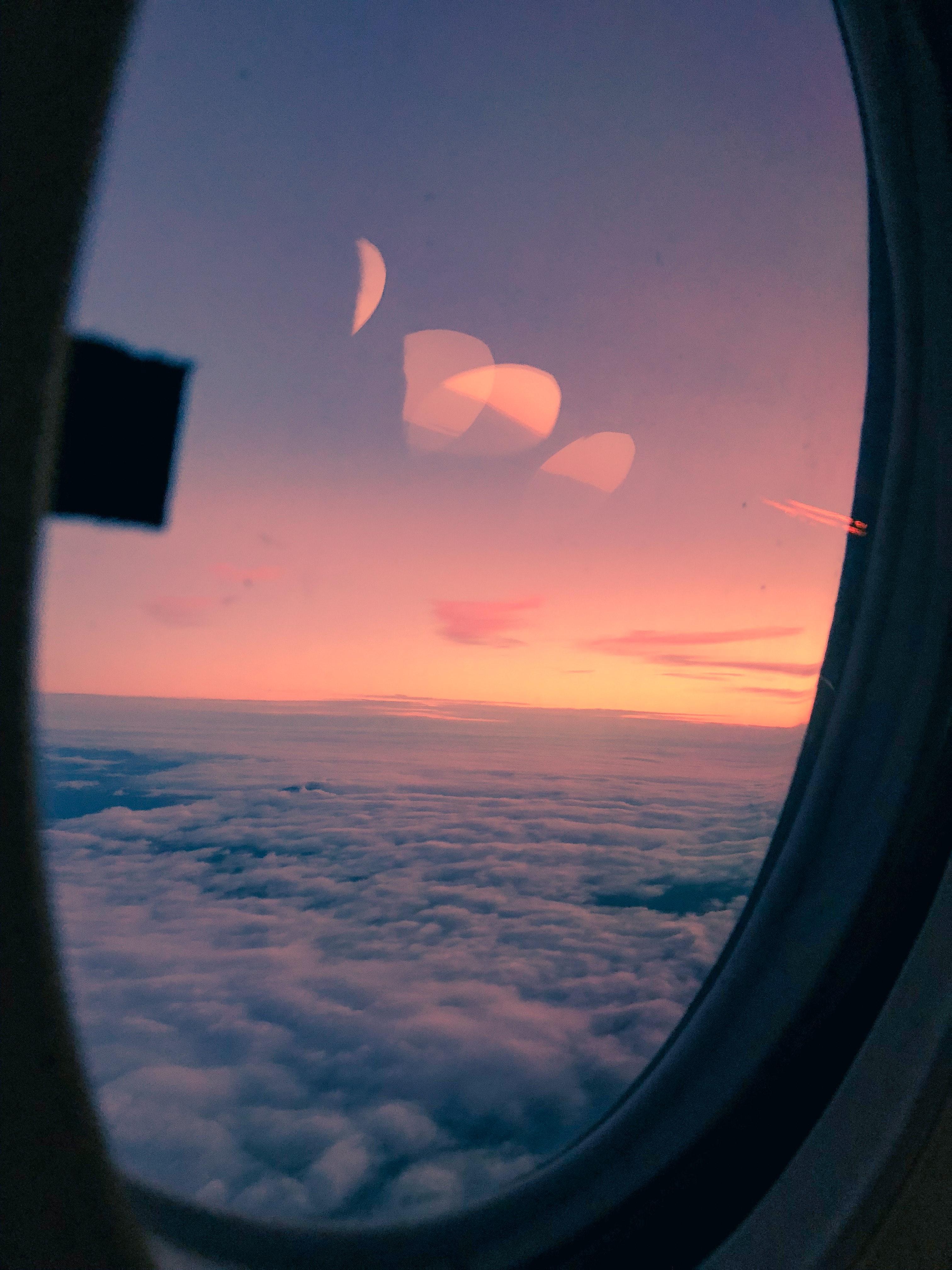 pink plane window